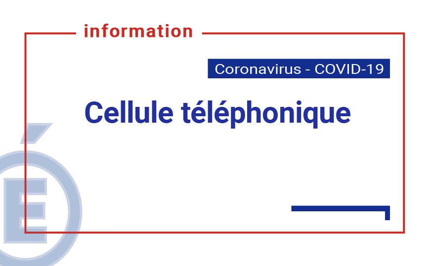 vignette-actu-siteweb-cellule-tel.jpg